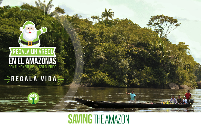 Saving The Amazon